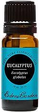 Eucalyptus- Globulus Pure Therapeutic Grade Essential Oil by Edens Garden