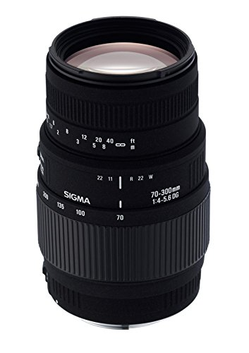Sigma 70-300mm f/4-5.6 DG Macro Telephoto Zoom Lens for Nikon SLR Cameras (Discontinued by Manufacturer) (Sigma 70 300mm F 4 5-6 Nikon)