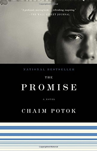 The Promise pdf epub download ebook