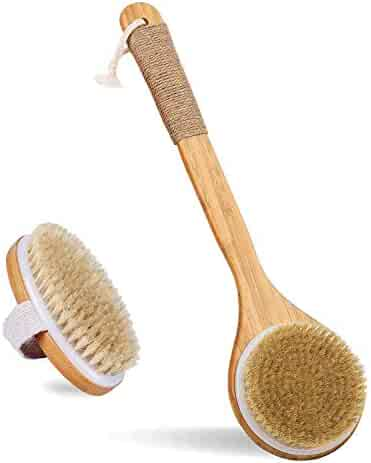 Bath Body Brush for Dry or Wet Brushing, Set of 2 with 2 Wall Hooks, Natural Bristle Hair Shower Back Brush, Exfoliation, Improve Lymphatic, Stimulate Blood Circulation, Eliminate Fat and Toxins