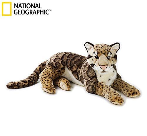 Leopardo Nebuloso Grande (Ngs) National Geographic Marron