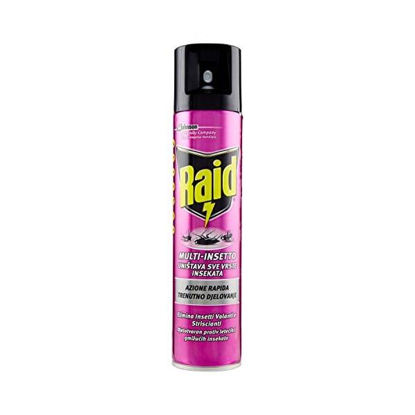 Raid Spray Multinsetto, Insetticida Spray, 1 Confezione da 300 ml 1 spesavip
