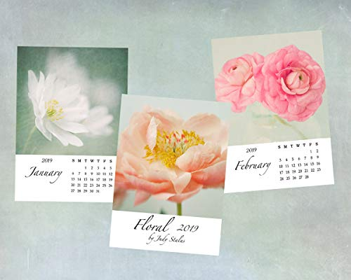 2019 Flower Desk Calendar, 5 x 7 by Judy Stalus