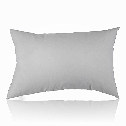 Continental Bedding 100 % Premium White Goose Down luxury Pillow, 550 Fill Power. (Queen)