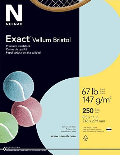 Exact Vellum Bristol, 8.5