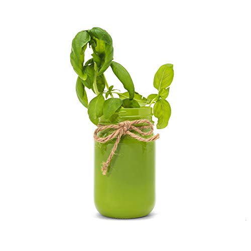Thoughtfully Gifts, Mason Jar Garden, Grow Your Own Herbs Gift Set, Contains Rosemary, Basil and Sage Seeds with 6 Soil Pods by Thoughtfully (Image #1)