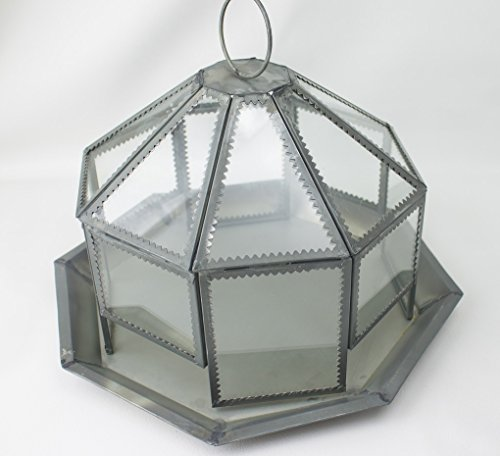 Garden District Metal (Garden District Francis Terrarium Glass & Metal 11