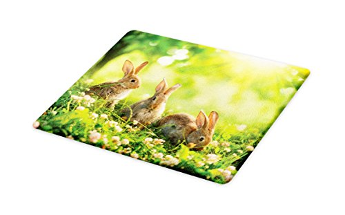 Lunarable Animal Cutting Board, Funny Fluffy Rabbits Bunny Family on Daisies Grass Easter Meadow Fresh Image, Decorative Tempered Glass Cutting and Serving Board, Large Size, Green and Tan