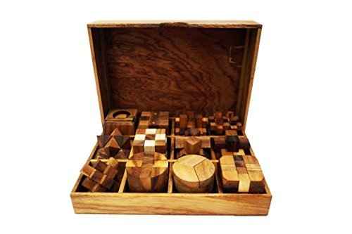 (KIDYPOOL Handmade Puzzle Sets - Twelve Brain Teasers with The Puzzle Showcase, 12 Wooden Game Set Handmade Wooden Puzzles for Adults)