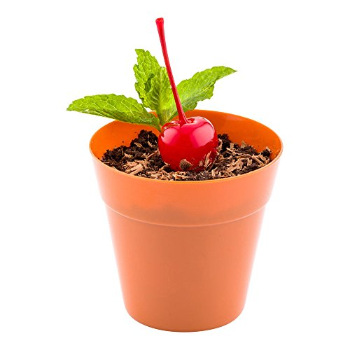 Mini Flower Pot - Terracotta Color, Premium Food Grade Plastic - Appetizers, Desserts, Side Dishes - Get Creative - 100ct Box - Restaurantware (Cotta Terra Plastic)