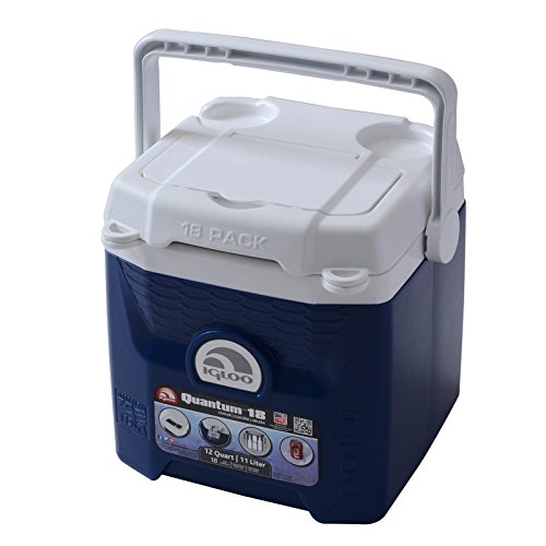 Igloo Quantum 18 Can Cooler