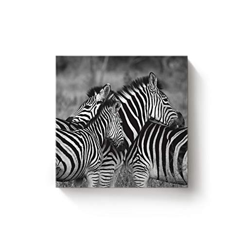 (EZON-CH The Zebra Horse of African Grey Pattern Square Canvas Wall Art,Artworks Oil Painting Home Decor for Office Bedroom Living Room,Stretched by Wooden Frame,Ready to Hang,16 x 16 Inch)