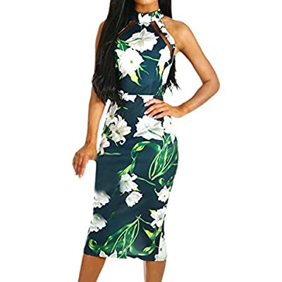FDSD Man Swimsuit Womens Pencil Long Dress A-Line Pleated Sleeveless Dress with Floral Printed Prom Party Dresses