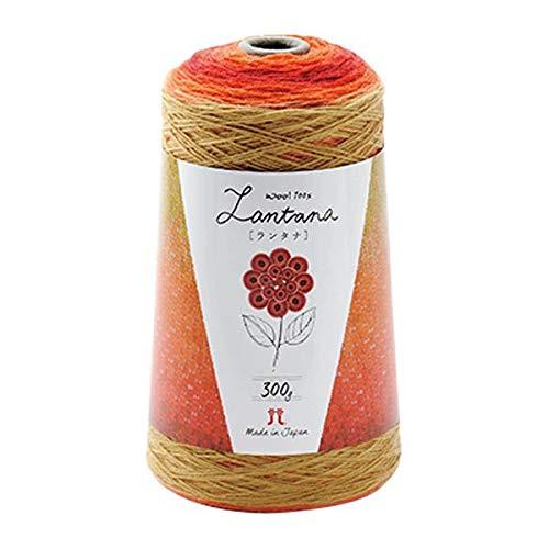 ウール100%の毛糸です。 ハマナカ ランタナ 毛糸 中細 Col.206 オレンジ系 300g 約1200m 2421 〈簡易梱包 B07RJ2ZVTY