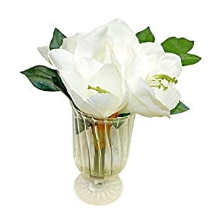 Ella and Lulu Real Touch Amaryllis in Glass Floral Arrangement 13-in Cream 8