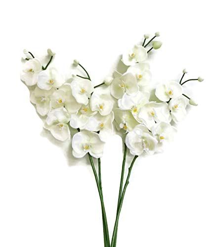 - Floral Kingdom Real Touch Latex Single Stem Orchid Branch for Floral Arrangements, bouquts, Office/Home Decor (Pack of 2) (Cool White)