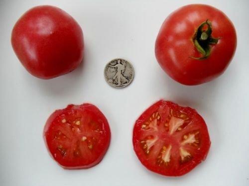 Rose De Berne - Organic Heirloom Tomato Seeds - Premier Slicer - 40 Seeds (Rose Tomato)