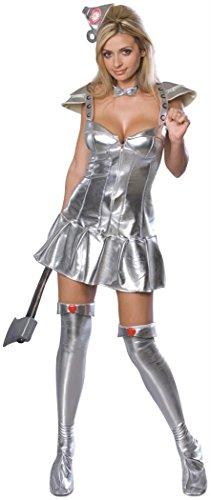 (Wizard Of Oz Secret Wishes Sexy Tin Woman Costume, Metallic Silver,)