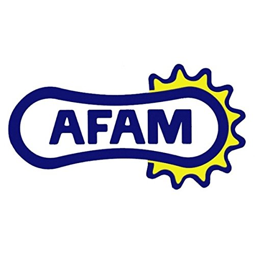 AFAM Kettensatz standard f/ür Gilera Eaglet 50 1996-1999 ZAP 503000 Bj