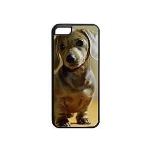 Custom DACHSHUND DOG COVER CASE IPHONE 5C