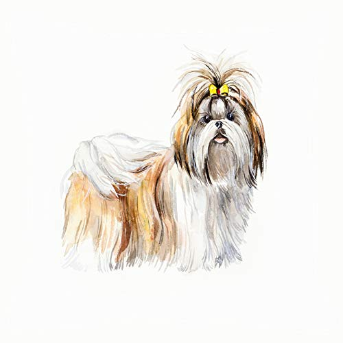 (Shih tzu Portrait Dog Watercolor Hand Animals wildlifenature Home Decorative Throw Pillow Case Cushion Cover for Gift Home Couch Bed Car 18