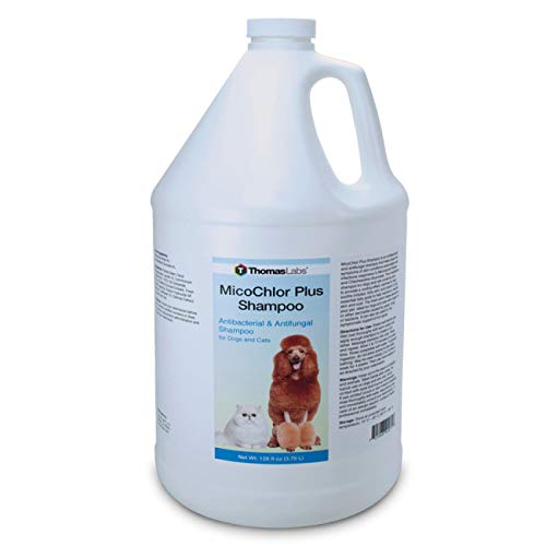Thomas Labs Medicated, Anti-Itch, Antibacterial, Antifungal Shampoo for Dogs, Cats, Horses - for Ringworm & Hot Spots - Chlorhexidine, Miconazole, Aloe - (128 Fluid Ounces, Gallon)