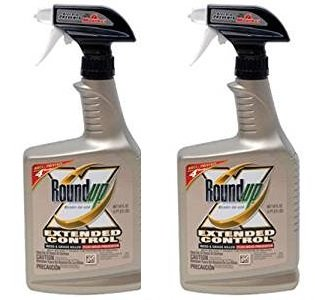 (Roundup 5107300 Extended Control Weed and Grass Killer Plus Weed Preventer II Ready-to-Use Trigger Spray, 24-Ounce (2 Pack(24 oz bottles)))