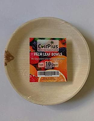 CoirPlus Premium Palm Leaf Plate