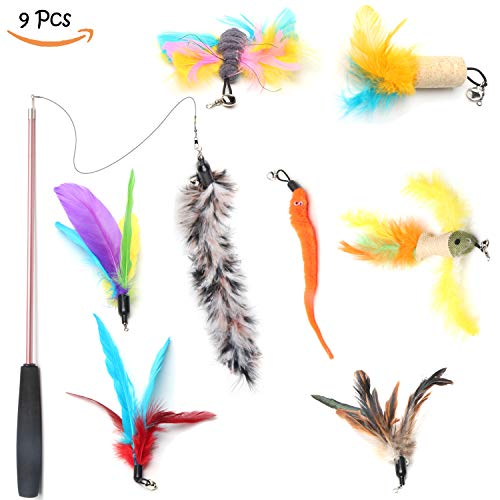 BoToKiNo Cat Feather Toys Interactive 9 Packs Retractable Cat Teasing Wand Cat Fishing Pole Assorted Refills Teaser Exerciser Wand Toy Set Fish Feather Butterfly Worm by BoToKiNo