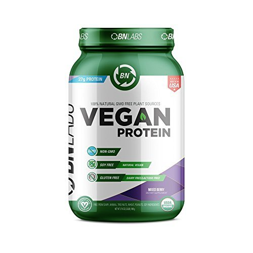 Organic Vegan Protein Powder - 27g Protein, RAW, Certified Organic, NON-GMO, Fully Natural Plant based – No Dairy, Gluten or Soy - Low Carb, No Sugar – Made in USA (30 Serving, Mixed Berry) ()