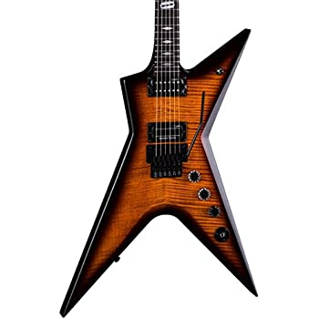 Amazon Com Dean Stealth Floyd Fm Electric Guitar With