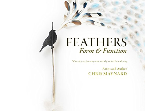 Feathers, Form & Function (Feathers Form And Function)