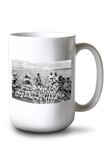 (Lantern Press Pineapple Plantation in Hawaii - Vintage Photograph (15oz White Ceramic Mug))