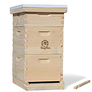 Busy Bee's -n- More Complete Langstroth Bee Hive includes Frames & Foundations (LBH10-2D1M)