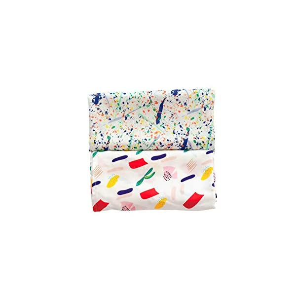 Warm, Soft, Comfortable Swaddle Baby Blanket for Sensitive Skin: 2 Pack (Matisse, Pollock)