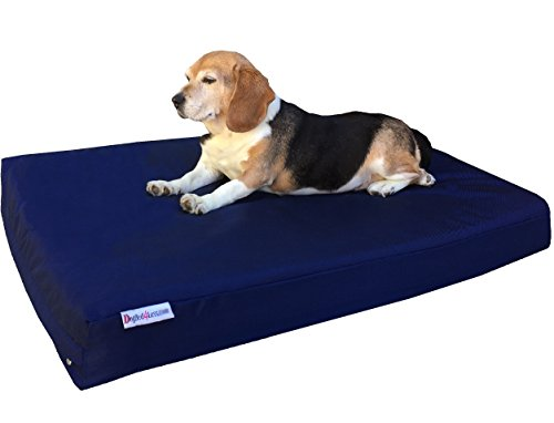 Dogbed4less Medium Orthopedic Dog Bed with Memory Foam for P