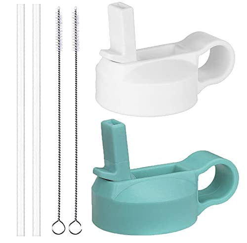 The Mass Wide Mouth Straw Lid Compatibility Most