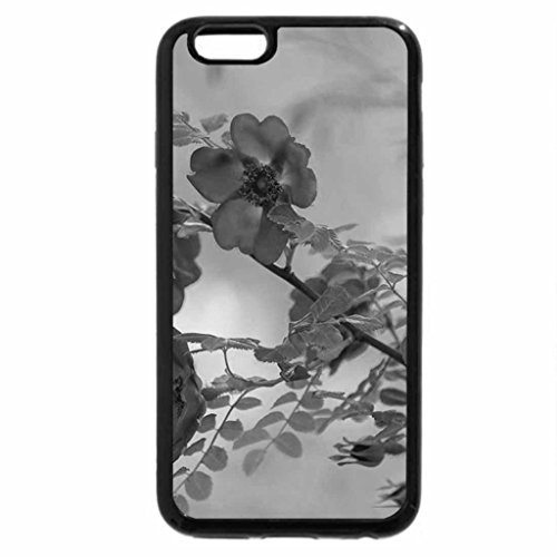 """iPhone 6S Case, iPhone 6 Case (Black & White) - They call me """"wild rose"""""""