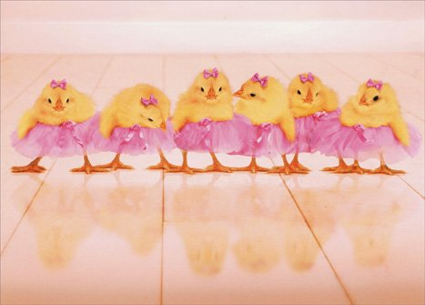 Chicks in Tutus Easter Card