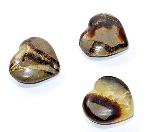 35mm Septarian Dragon Stone Heart Polished Calcite/Aragonite Gemstone Crystal Mineral Specimen - Madagascar (1PC)