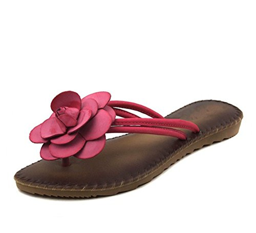 Dasha Hubfam Female Soft Slippers Lovely Sweet Real Leather Insole Beautiful Flowers Slippers