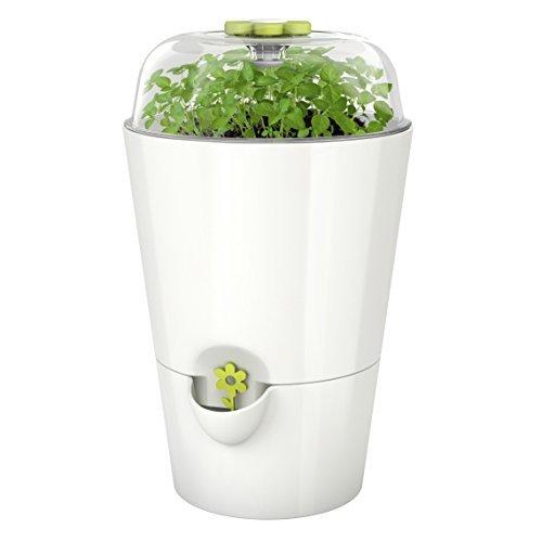 Emsa 515565 Kräutertopf Fresh Herbs Grow, weiß