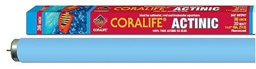 Actinic Blue 03 Fluorescent Lamp (Coralife Energy Savers ACLAF831 Actinic 03 flouorescent Bulb, 36-Inch)