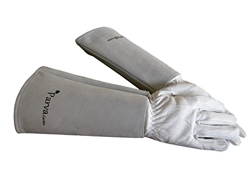Rose Pruning Thorn Proof Gloves - Thorny Cacti, Blackberry Brambles, Prickly Plants - Leather Gloves with Canvas Gauntlet for Men and Women Gardening Gloves (Medium Neutral) by Parva Garden