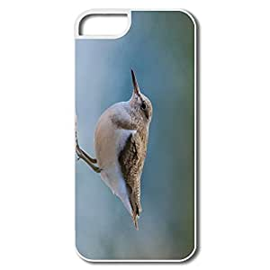 Funny Common Sandpiper IPhone 5/5s Case For Birthday Gift