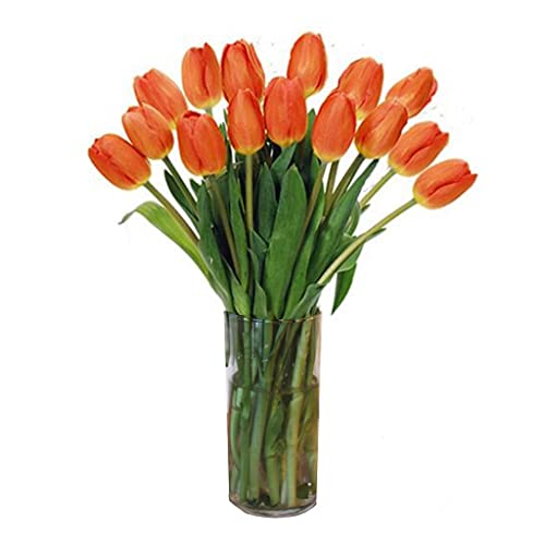 Stargazer Barn, Stems of Fresh Orange Tulips Farm picked Tulips with Vase California Grown, 15 Count