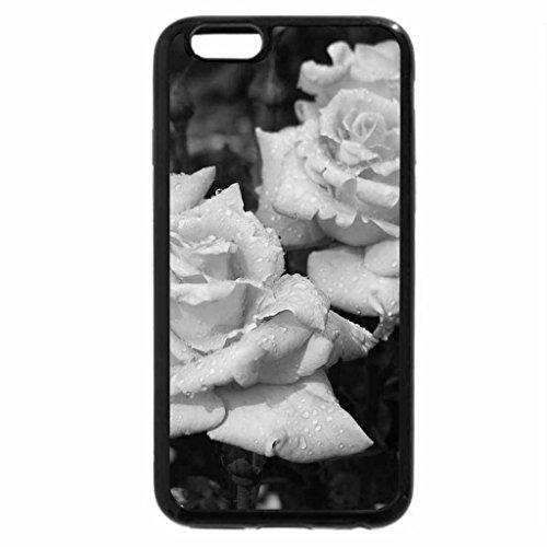 iPhone 6S Plus Case, iPhone 6 Plus Case (Black & White) - Angelic Roses