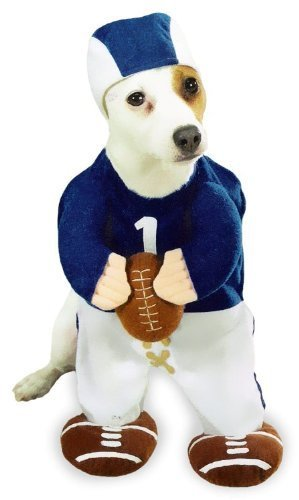 Football Fever Dog Costume SMALL by Chom