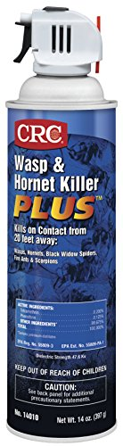 CRC 14010 Wasp & Hornet Killer Plus Insecticide, 14oz, Clear Liquid (Spray Nest Wasp)