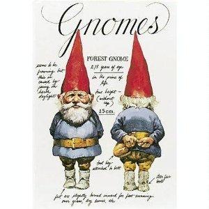 Gnomes (English and Dutch Edition)